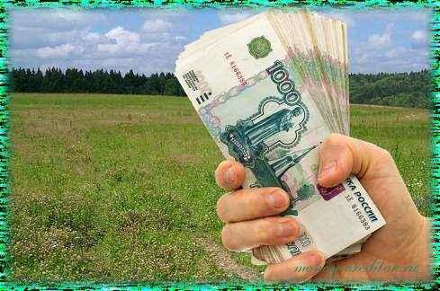 деньги под залог земельного участка выдают без справок о доходах