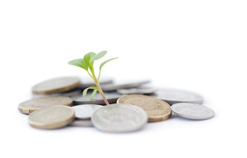 Чековый инвестиционный фонд фонд инвест