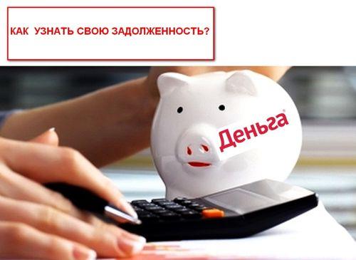 Деньга узнать сумму долга заемщика по займу до зарплаты