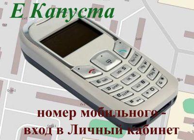 В личный кабинет займа МКК Капуста войти можно по номеру телефона