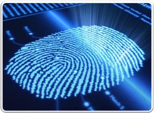 займ в МФК на Киви без отказа только для идентифицированных кошельков